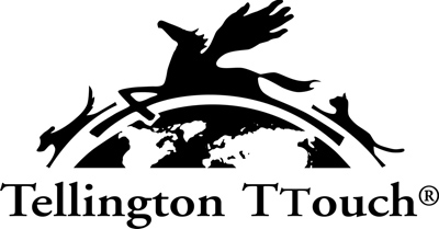 Tellington Team 